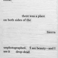 Beauty Drops Dead